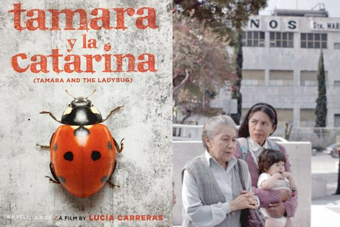 SOLICITUD DE CÓDIGO PARA EL VISIONADO DE 'TAMARA Y LA CATARINA'